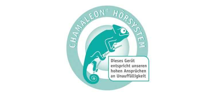 <b>Auftraggeber:</b> Hörstudio Rhein-Main, Frankfurt (M), Leistungsangebots-Ikon der Werbekampagne für individuell angepasste Hörgeräte.